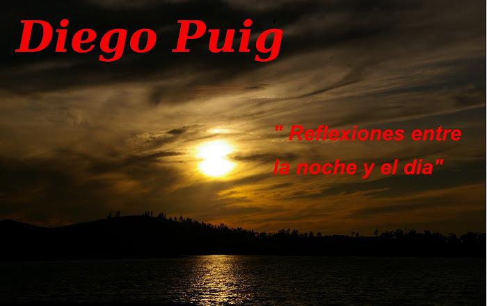 EL BLOG DE DIEGO PUIG