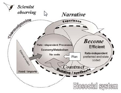 basic ecological concept 19022014 concepts of ecology: structural and functional concept of ecology based on structural components and their relationships, ecology and.