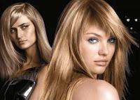 Free Redken Blonde
