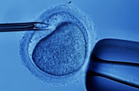 In Vitro Fertilization About to Go On Sale