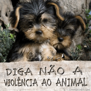 Diga NO  violncia ao animal!!!