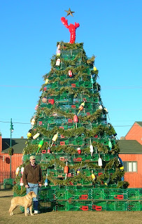 White Cedar Inn Today: Lobster Trap Christmas Tree in Rockland