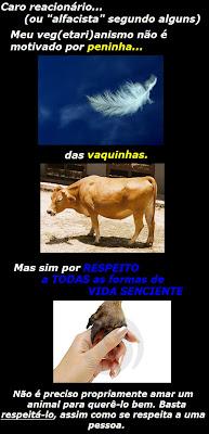 [respeito+aos+animais.jpg]