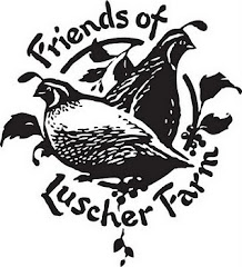Friends of Luscher Farm
