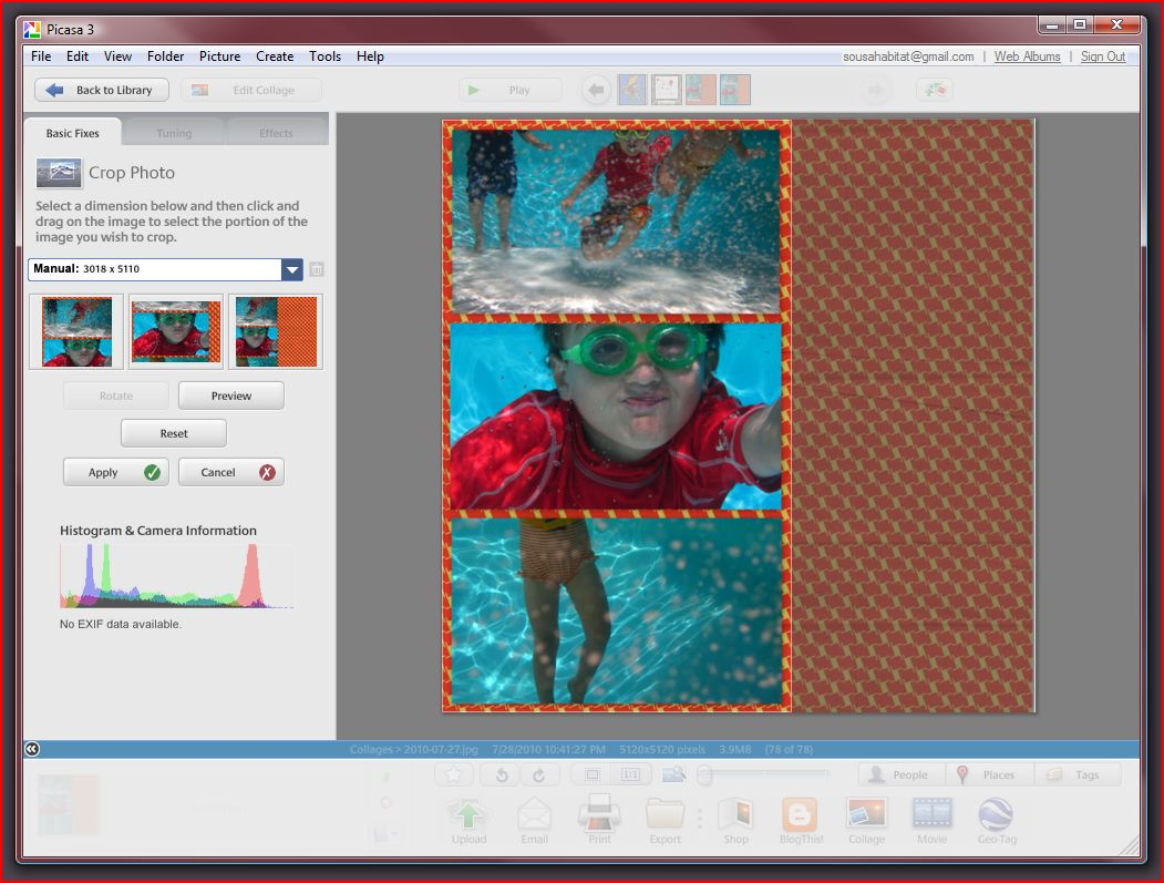 how to add image to another image picasa