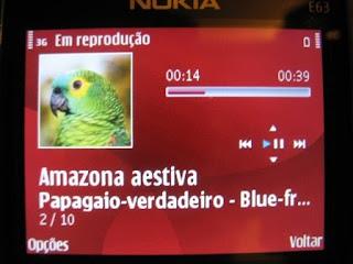 Tela do player tocando o canto de uma ave