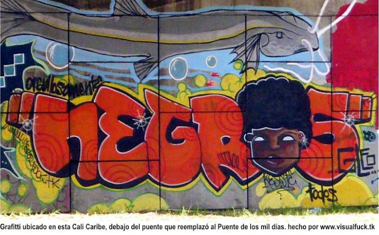 orgullo afrocolombiano
