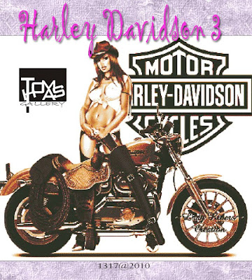 cross stitch harley davidson