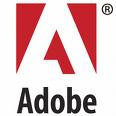 Do not have Adobe Reader to read files?