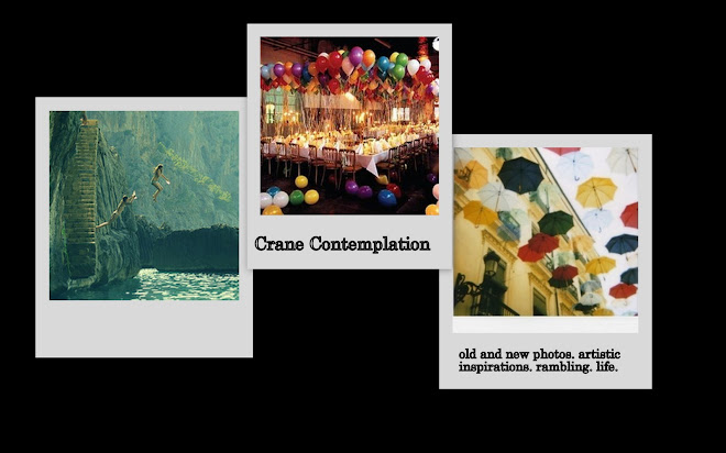 crane contemplation