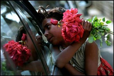 Child Selling Roses On Street of Mumbai