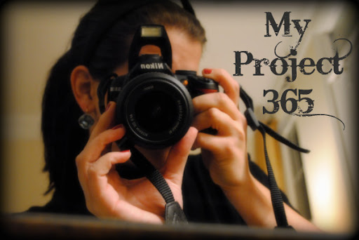 My Project 365