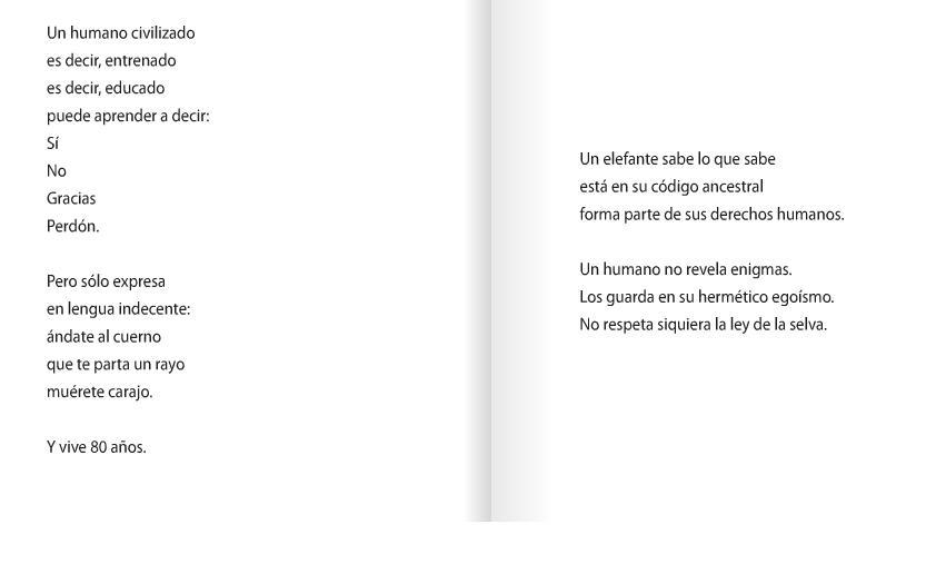 Gestion Cultural Chile ELEFANTE De TERESA CALDERON