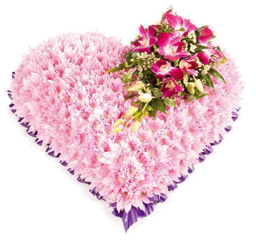 Corazones de rosas naturales de diferentes tama 241 os presentaciones