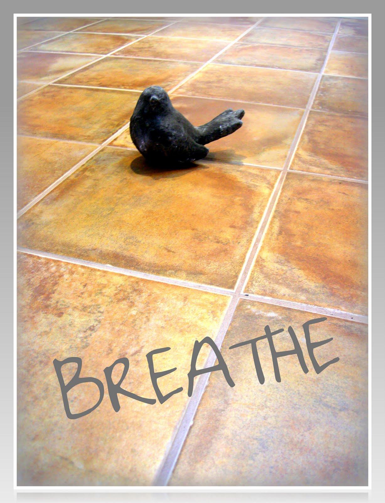 http://2.bp.blogspot.com/_iGmQrFsrgdA/S_M5K8pha6I/AAAAAAAABaU/L7Zhrnr4egU/s1600/Breathe+Floor+tweaked.jpg