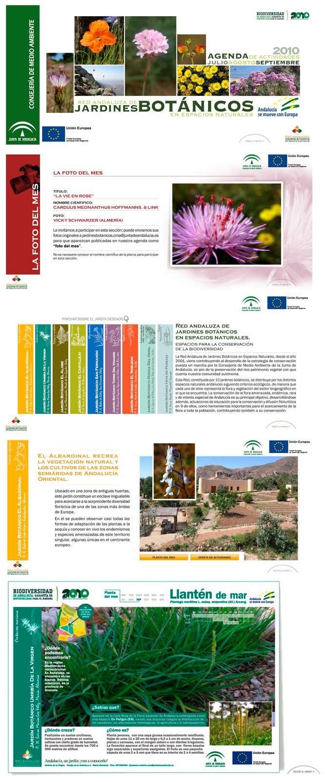 Muestra de Guía interactiva de la red Andaluza de Jardines 2010 publicada mensualmente en su web