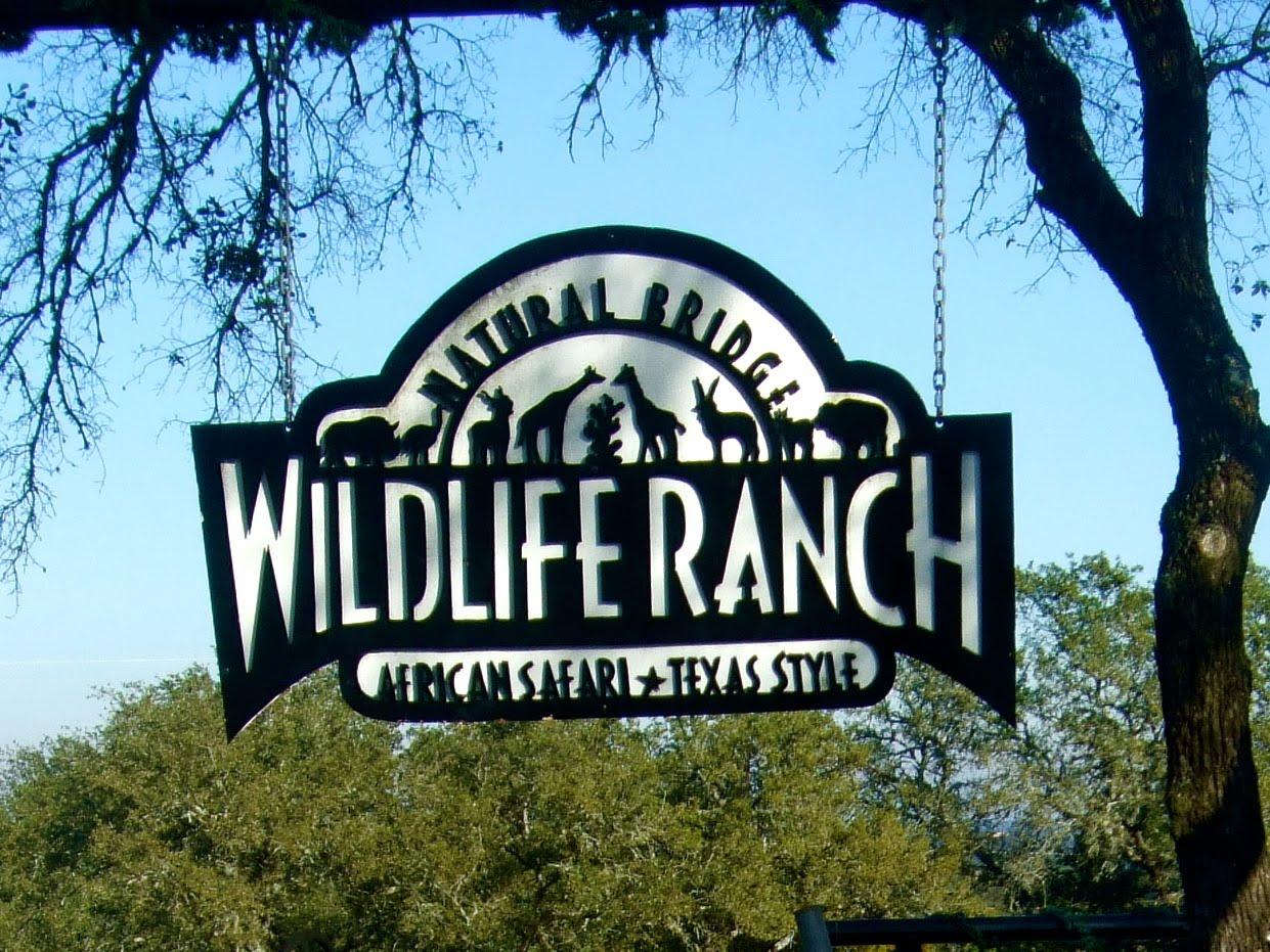 Natural Bridge Safari Park Texas