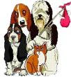 PROTOCOLO SI TE ENCUENTRAS UN ANIMAL ABANDONADO EN LLEIDA CIUDAD O EN UN MUNICIPIO DEL SEGRIÀ