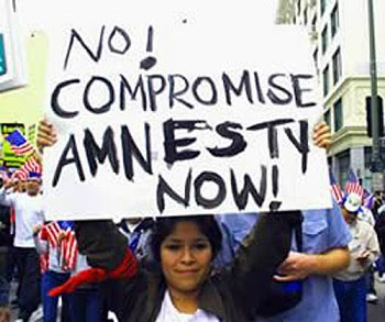 amnesty for illegals now protest sign High Cost of Illegal Immigration