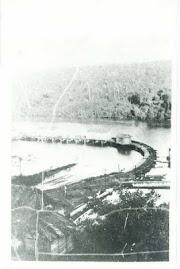 GUANOCO 1930
