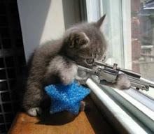 Francotirador Inofensivo