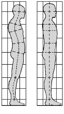 muscolar