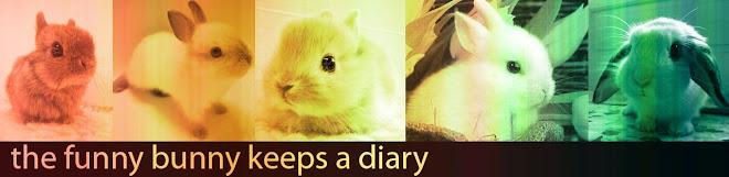 The Funny Bunny keeps a Diary