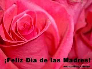 Imagem Feliz dia de las madres