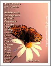 Arte de borboleta - Chris Herrmann
