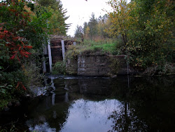 The Old Hector Dam