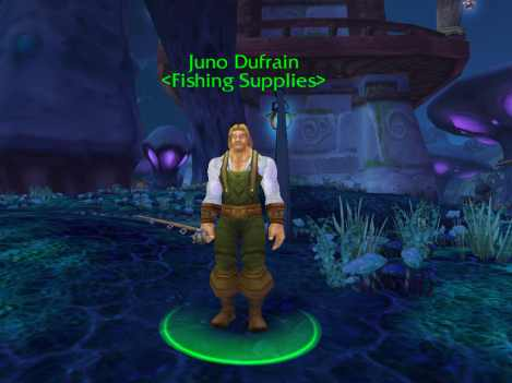 Master of world of warcraft world of warcraft fishing for Wow fishing guide