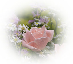 Rosa do sonho...