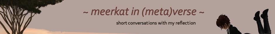 Meerkat in (meta)Verse ...