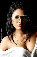 www.ashkanpic.com