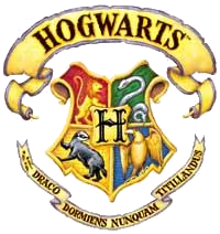 sygQu travels to Hogwarts School