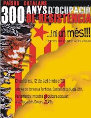 Marxa de Torxes 2008