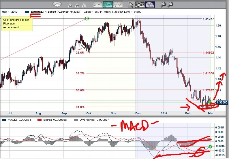 Shocked Investor: Will the Euro Go Up or Down? Short Video