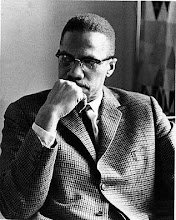 Malcolm X<br>An Intelligent and Vigilant<br>Nubian Knight Hero