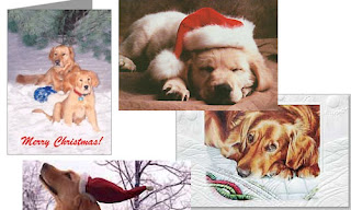 golden retriever puppy christmas cards