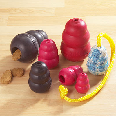 Are Kongs Good For Dogs