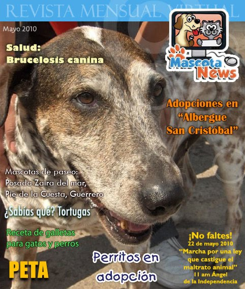 Revista del mes de mayo