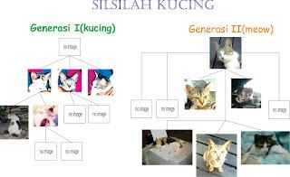 silsilah keluarga kucing