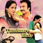 Tumhare Bina  Movie, Hindi Movie, Tamil Movie, Bollywood Movie, Kerala Movie, Telugu Movie, Punjabi Movie, Free Watching Online Movie, Free Movie Download