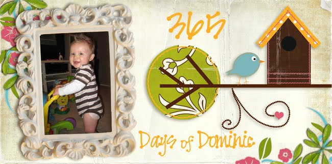 (Almost) 365 days of Dominic