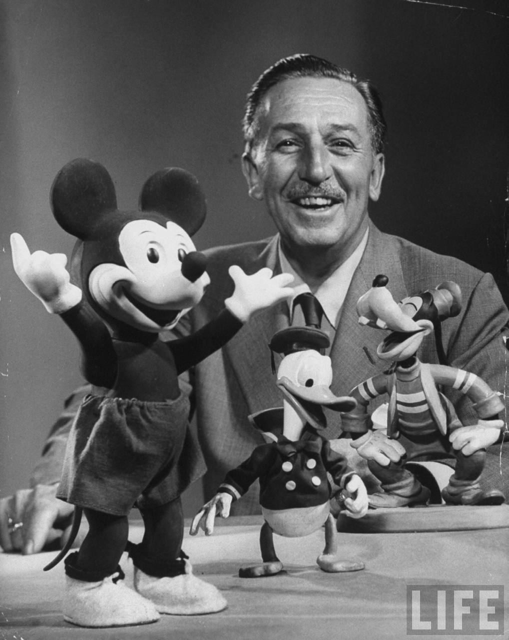 What can we learn from WALT Disney ?