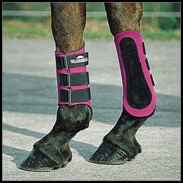 how to put on brushing splint boots my forum