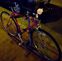 Rose on a red bike