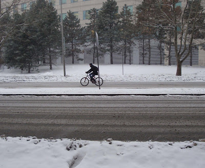 winter storm bicyclist