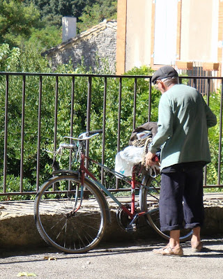 old man mixte Provence