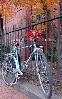autumn leaves bike